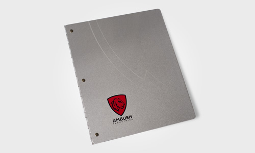 Ambush Investor Book Cover