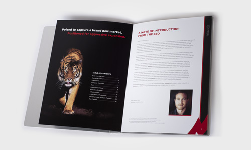 Ambush Investor Book Interior Spread